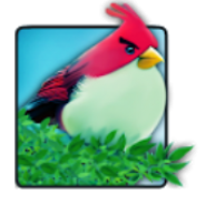 Natural Angry Birds Free LWP